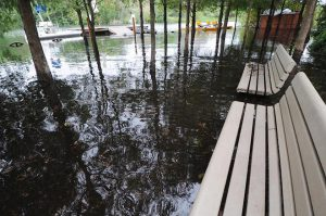 Zoo Miami Shut Down as Major Flooding Drowns South Florida