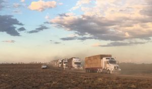 World's Biggest Truck Convoy Delivers Hay to Drought Stricken Farmers