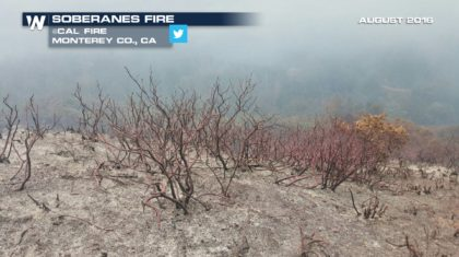 Charred California Landscapes in Danger of Flooding