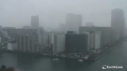 First November Snow in Tokyo, Japan in Over 50 Years