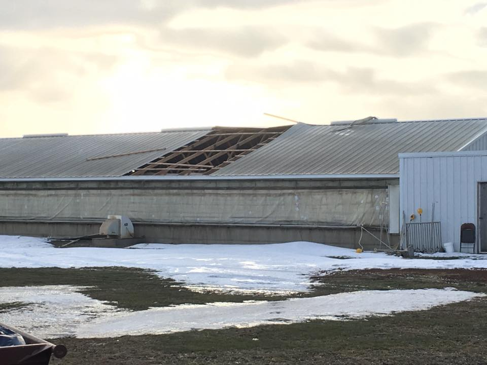 High Winds Cause Damage Across the Midwest