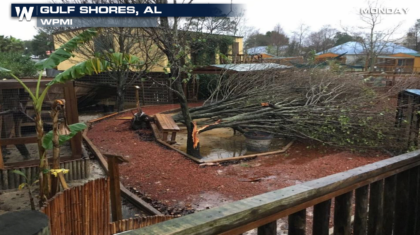 Damage & Fatalities from Severe Storms in the South