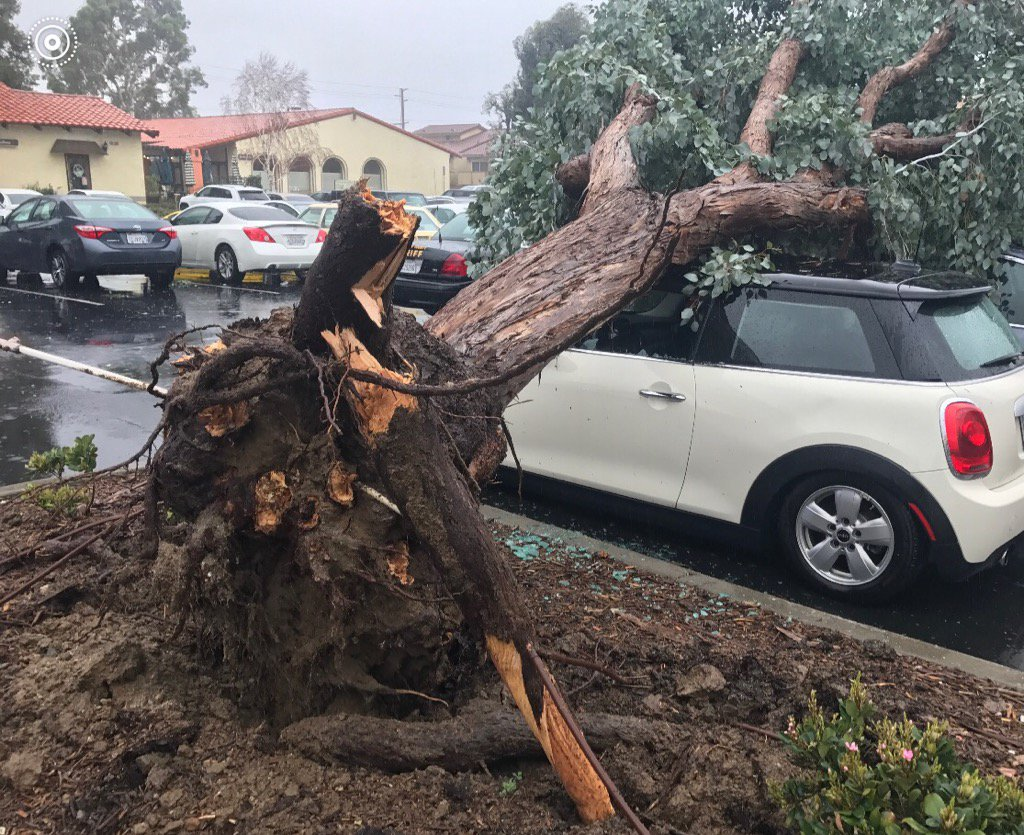 Gallery: Pictures of The California Storm