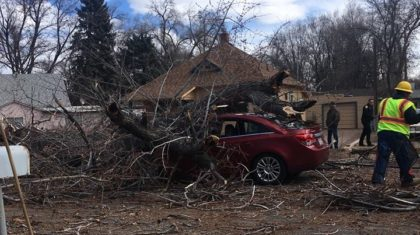 Watch: Dash Cam Footage Shows Tree Falling on Car– High Wind Continues Wednesday