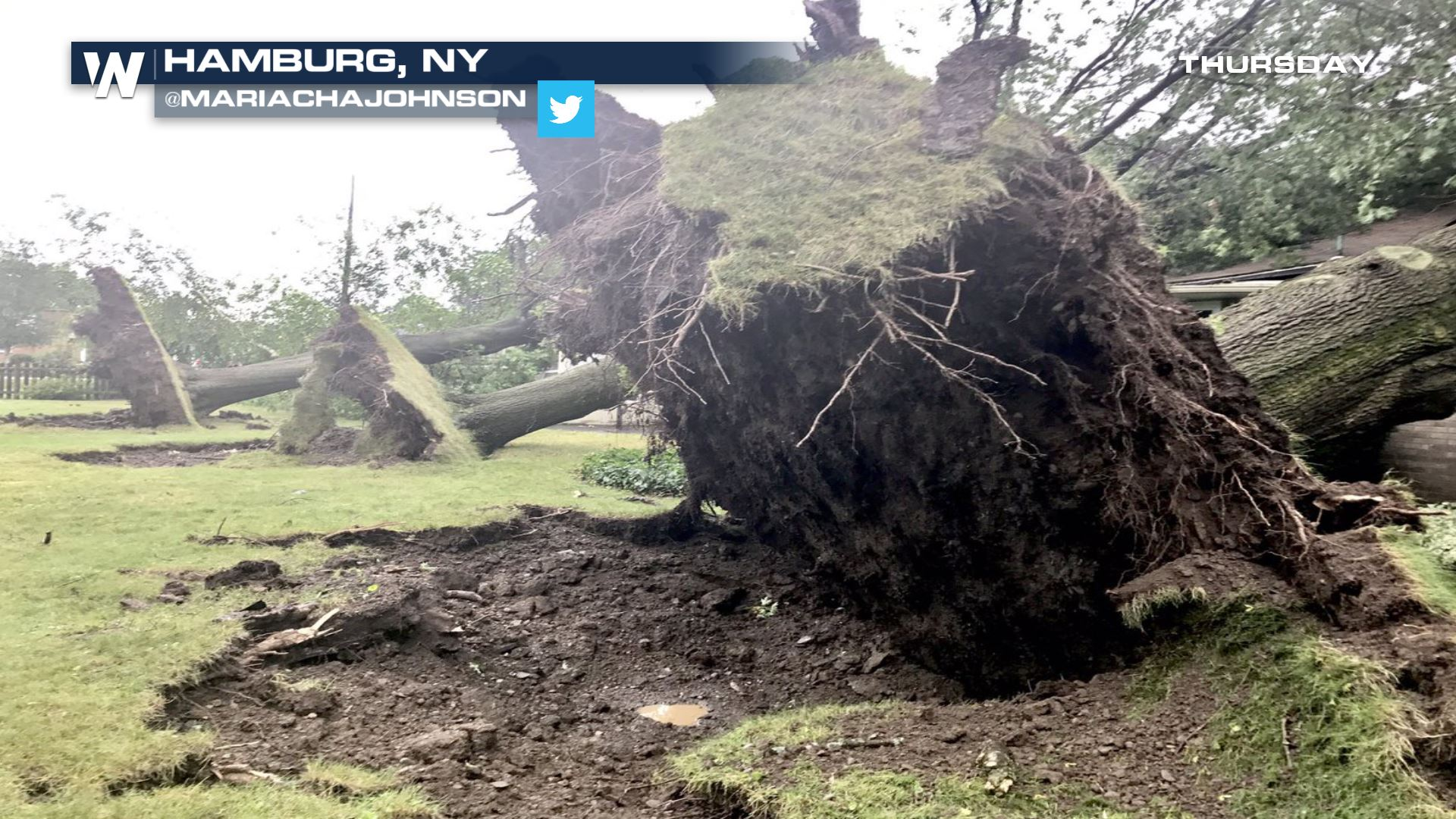 multiple tornadoes confirmed in new york