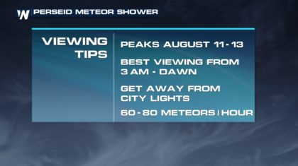 Look up: Perseid Meteor Shower Peaking This Weekend