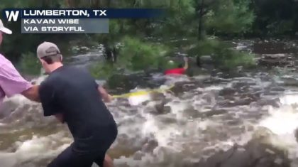 VIDEO: Men Work to Save Dog from Raging Waters in Texas