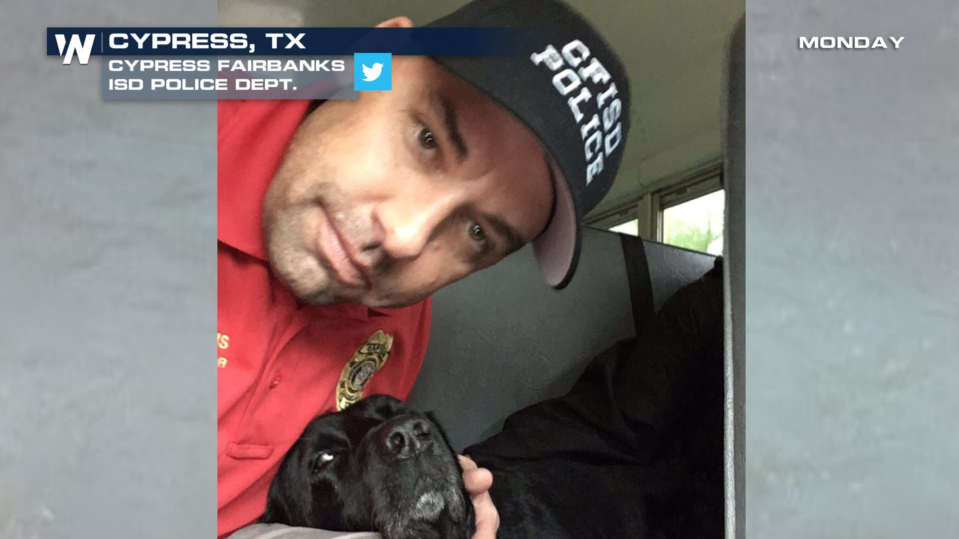 Iraq Veteran K9 Rescued Among Others From Texas Flooding