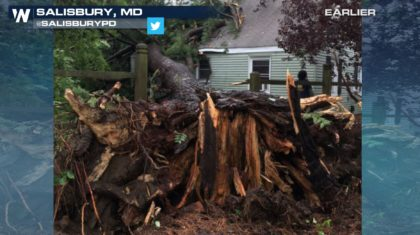 Severe Storms, Possible Tornado Cause Damage in Maryland