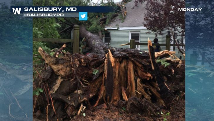 EF-1 Tornado Confirmed in Maryland