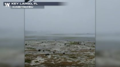 Drained Ocean Beds During Hurricane Irma Explained