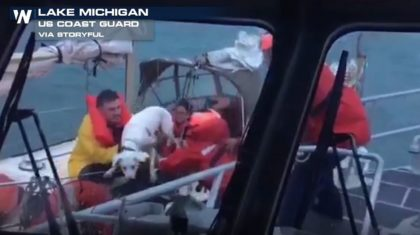Coast Guard Rescues Dogs, Passengers From Stricken Sailboat in Lake Michigan