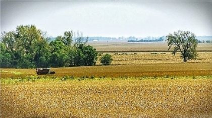 Rain Delays Harvest in Illinois - Results in Harvest Emergency
