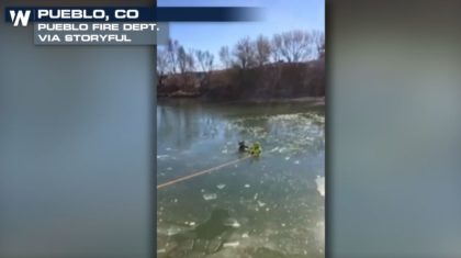Firefighters Rescue Dog From Icy River in Colorado