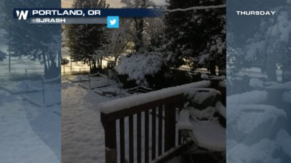 We Still Have Lot Of Snow On Ground But >> A Snowy February For Portland Weathernation