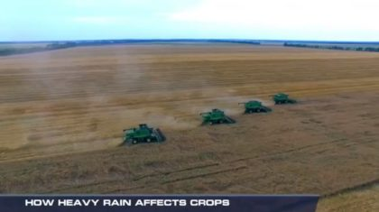 How Heavy Rains Affect Crops