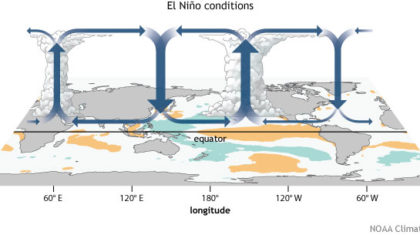 A Visit to the Weather Zoo: Climate Patterns that can Precede El Nino