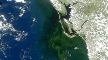 Tracking Florida's Red Tides with Satellites and Smartphones