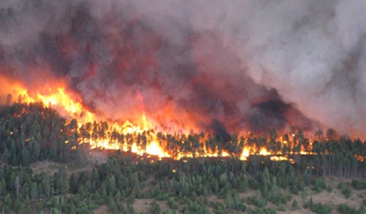 Wildfires Impact Soil Moisture and Runoff