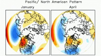 The Pacific-North American Pattern: the Stomach Sleeper of the Atmosphere