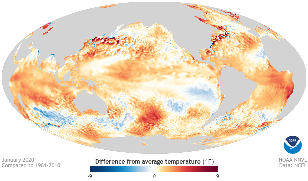February El Nino Update: Mind Reading