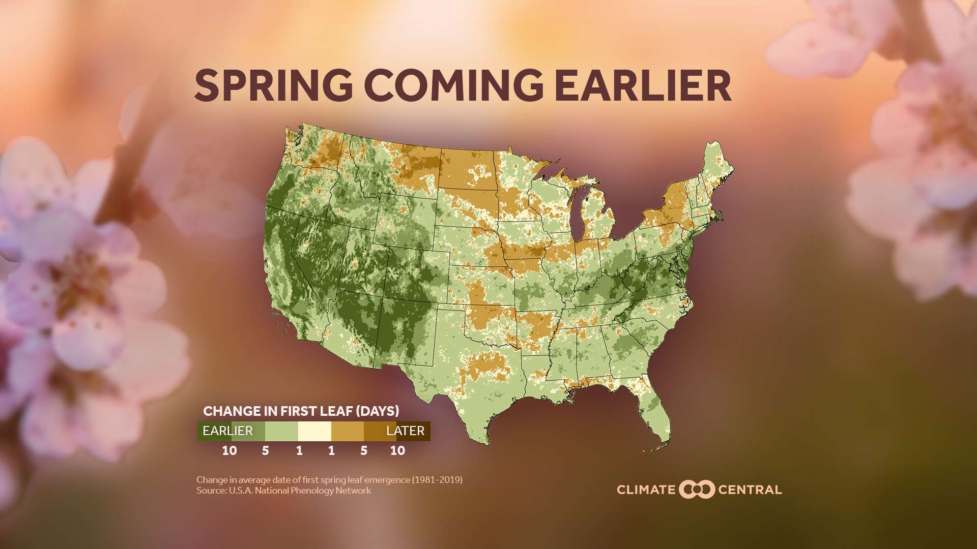 Spring Springing Earlier In Many U.S. Cities