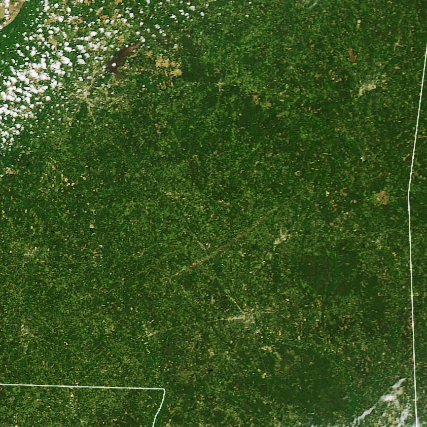 Recent Tornado Scars Seen By Satellite