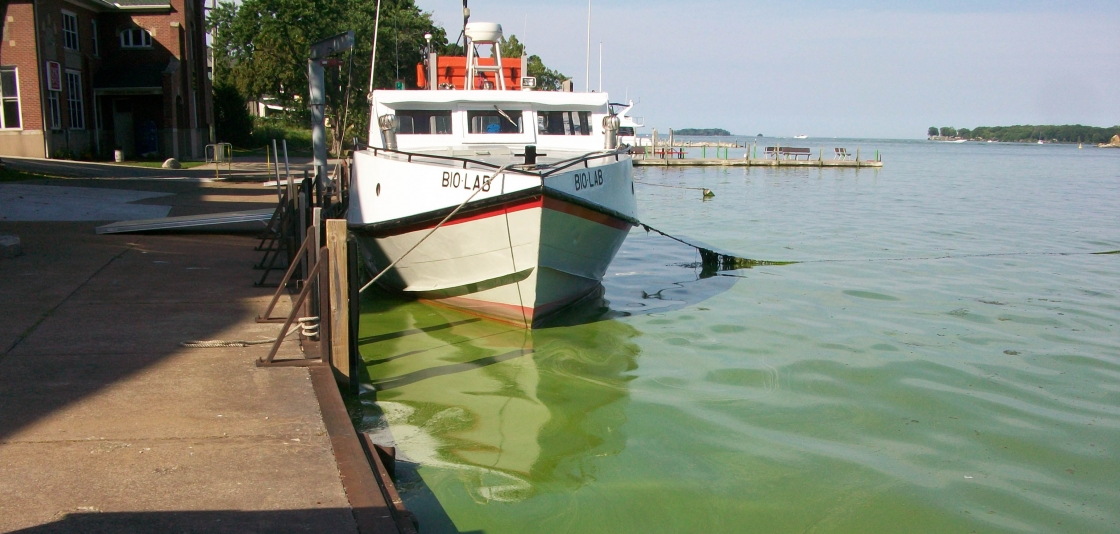 Lake Erie: Moderate Algae Bloom Expected