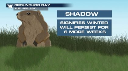 The Groundhog vs. the 2020 Temperature Record: Keeping Score