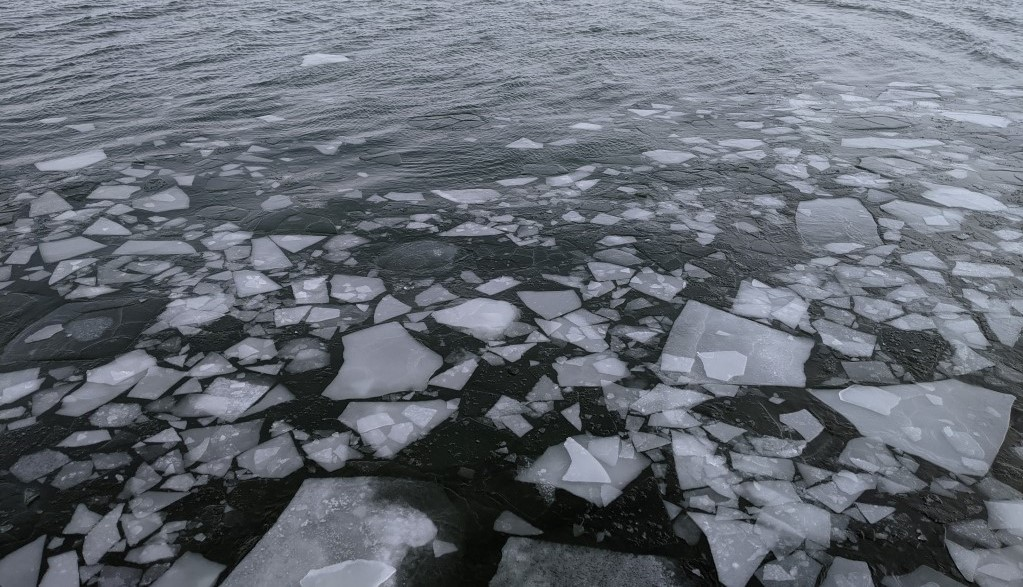 Ups and Downs of Great Lakes Ice Cover in 2021