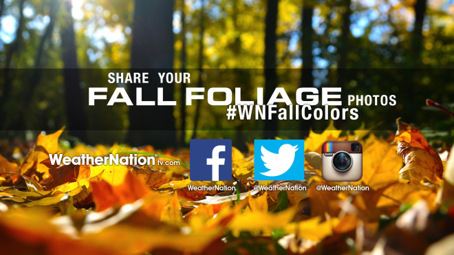Five 'Can't Miss' Drives to See Fall Foliage This Weekend