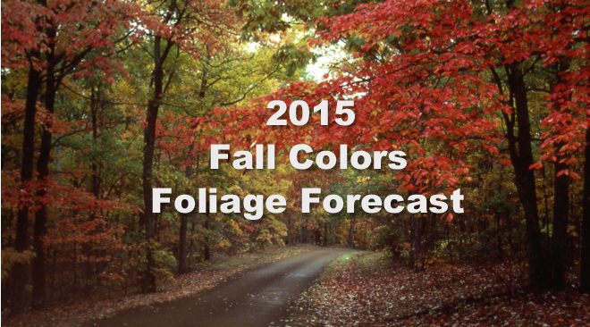 The Return of Nature's Most Colorful Show – Fall Colors Foliage Forecast
