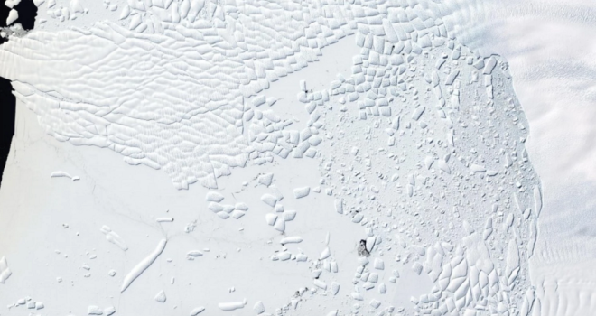 Landsat 8 natural-color mosaic of the ice cliff at the terminus of Thwaites Glacier, West Antarctica on Jan. 9. Knut Christianson:USGS