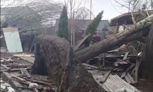 Confirmed Tornado: More Destruction to Drenched Washington