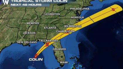 Florida Gov. Rick Scott Declares State of Emergency as Tropical Storm Colin Approaches