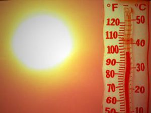 Heat Safety: What You Need to Know