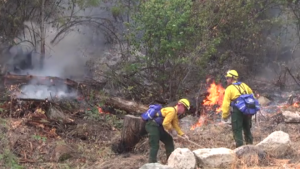 Three Firefighters Killed – A Cool Down Could Fuel a Flare Up