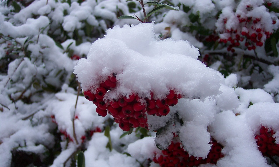 Top Five Strangest Places It's Snowed on Christmas