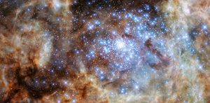 Hubble Unveils Group of Stars More Than 100 Times Larger Than the Sun