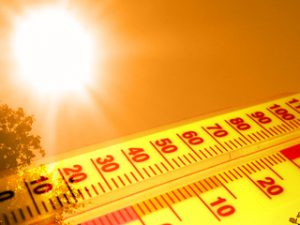 2020: Warmest, Wettest Year on Record for Some
